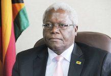 Home Affairs Minister Dr Ignatius Chombo