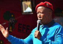 Economic Freedom Fighters leader Julius Malema