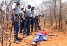 Police officers inspect the body of Qalisani Moyo in Filabusi yesterday