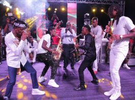 Jah Prayzah and Diamond Platnumz performing 'Watora Mari'