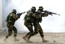 Senegal, which surrounds The Gambia, has been selected to send in forces if the stalemate persists (Picture by AFP)