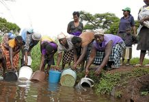 Cholera killed more than 4 000 people in Zimbabwe in late 2008 to early 2009