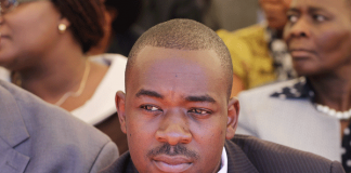 Advocate Nelson Chamisa