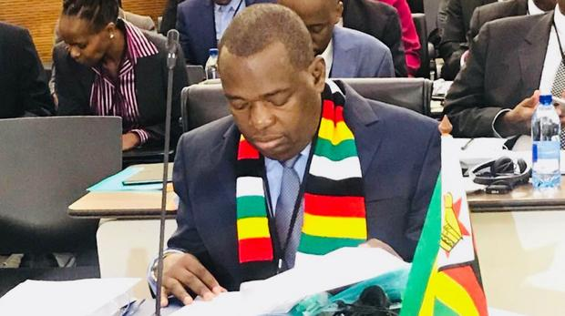 Foreign Affairs and International Trade Minister Sibusiso Moyo