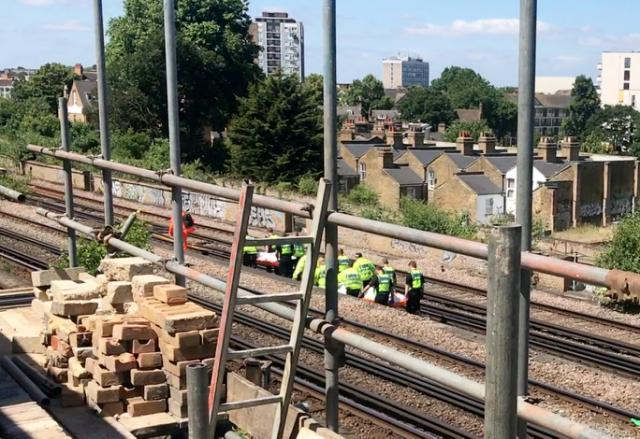 Emergency services attend the scene in South London (SWNS)