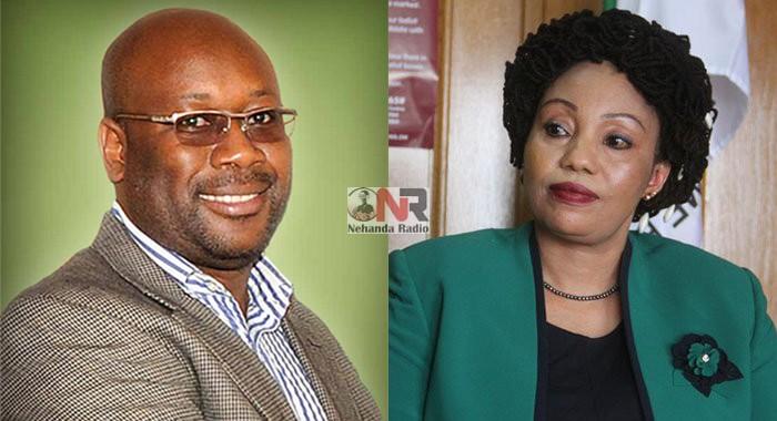 Winston Chitando and Priscilla Chigumba