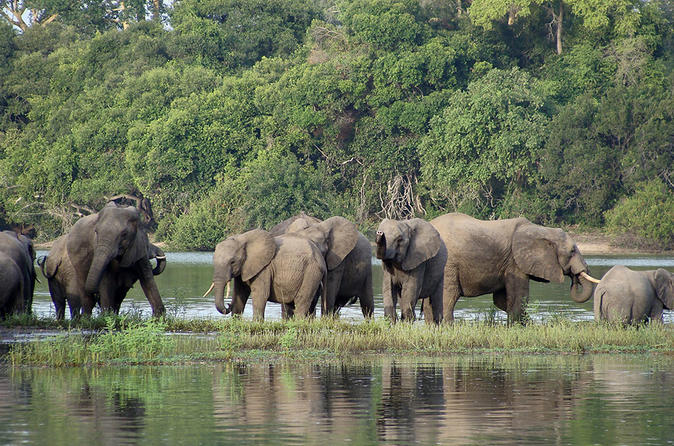 The deal, worth $3bn (£2.4bn), envisages the construction of a dam on the Rufiji River in the Selous Game Reserve, a Unesco World Heritage site.