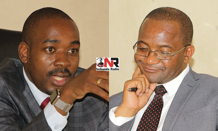 Nelson Chamisa and Douglas Mwonzora