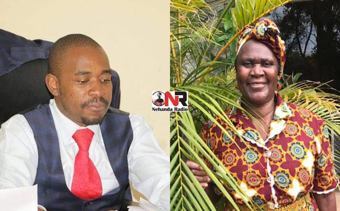 Obituary: Fare thee well Gogo Alice Chamisa thumbnail