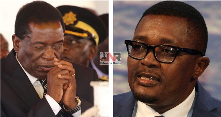 President Emmerson Mnangagwa and former Foreign Affairs Minister Walter Mzembi